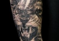 invictus-tattoo-berlin-Biro-Blanka-tetovalo-tattooist-tattoo-artist-lion-lowe-realistic-realistisch