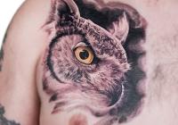 Invictus-Tattoo-Berlin-Budapest-tattoo-artist-taetowierer-Csaba-Koszegi-eule-owl-bagoly-realistic-realistisch