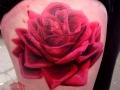 nvictus-Tattoo-Budapest-Berlin-Szilvasi-Gyula-tetovalo-tattooist-artist-Natur-flora-fauna-realistic-realistisch-rose-rozsa-farbe