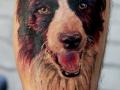 nvictus-Tattoo-Budapest-Berlin-Szilvasi-Gyula-tetovalo-tattooist-artist-Natur-flora-fauna-realistic-realistisch-hund-portrait-farbe