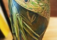 nvictus-Tattoo-Budapest-Berlin-Szilvasi-Gyula-tetovalo-tattooist-artist-Natur-flora-fauna-realistic-realistisch-snake-schlange-farbe