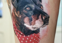 Invictus-Tattoo-Budapest-Berlin-Teglas-Attila-tetovalo-realistic-colored-portrait-japanisch-asiatisch-tiger