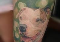 Invictus-Tattoo-Budapest-Berlin-tetovalo-szalon-parlor-Teglas-Attila-dog-portrait-kutyaportre-hund-realistic