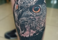 Invictus-Tattoo-Budapest-Berlin-Teglas-Attila-tetovalo-realistic-eule-owl-bagoly